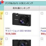 DSC-W300
